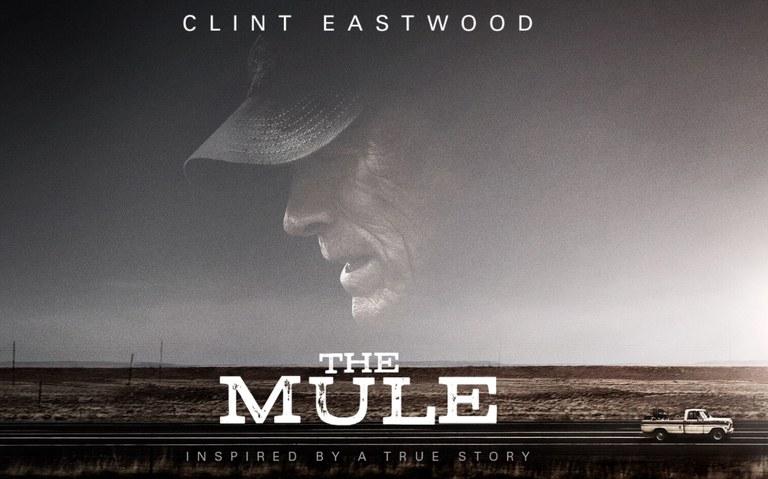 The Mule Kino